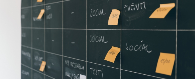 Rew your Marketing plan often